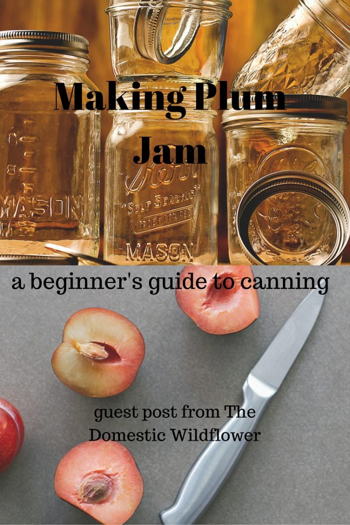 Making Plum Jam