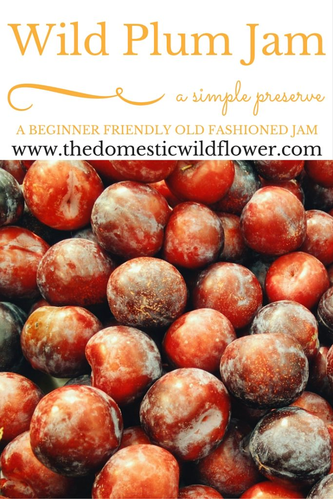 Domestic Wildflower Plum Jam